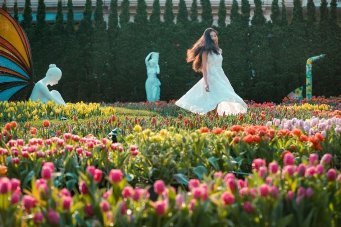 Vườn tulip rực rỡ sắc màu trên đỉnh Bà Nà