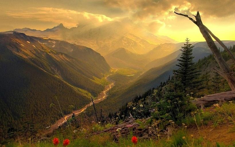 Kinh nghiệm chinh phục Đèo Khau Phạ ngắm cảnh đẹp mê hồn xứ Tây Bắc